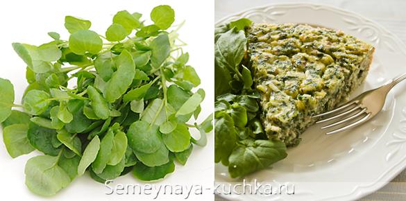 как вырастить кресс-салат дома