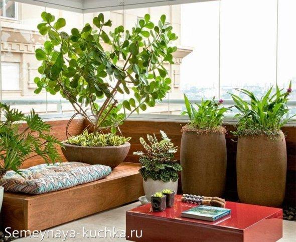 балкон в эко-стилей