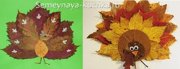 аппликация павлина из осенних листьев