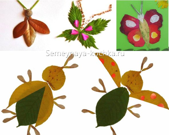 аппликация насекомых из листьев