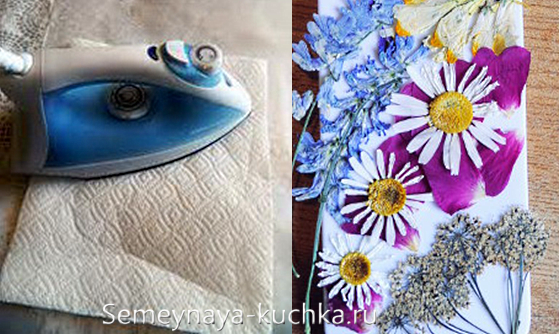 как сушить цветы