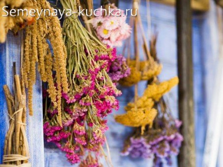 как засушить цветы