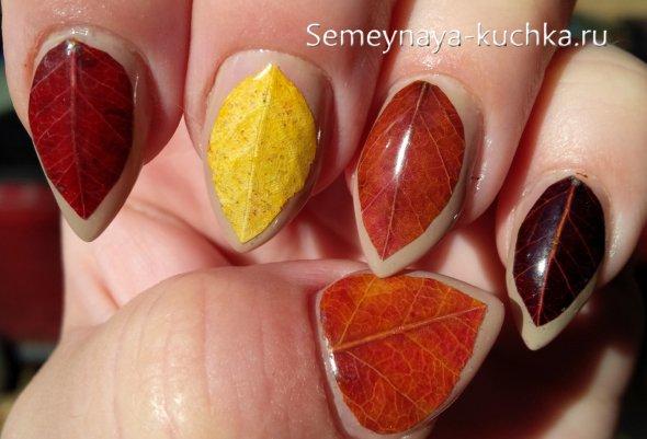 листья на ногтях
