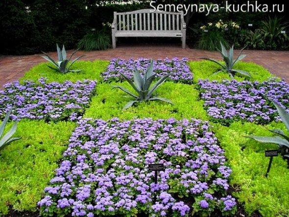 клумба с осенними цветами