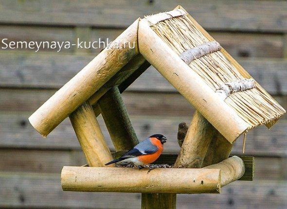 простая уличная кормушка для птичек