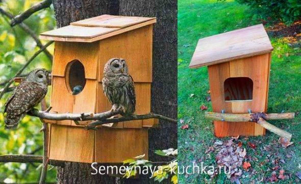 домики для больших птиц и сов