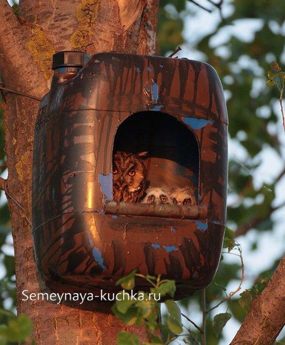 домик для сов