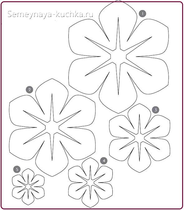 трафареты и шаблоны цветов из бумаги