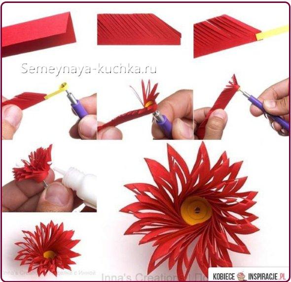 как сделать астру из бумаги цветной