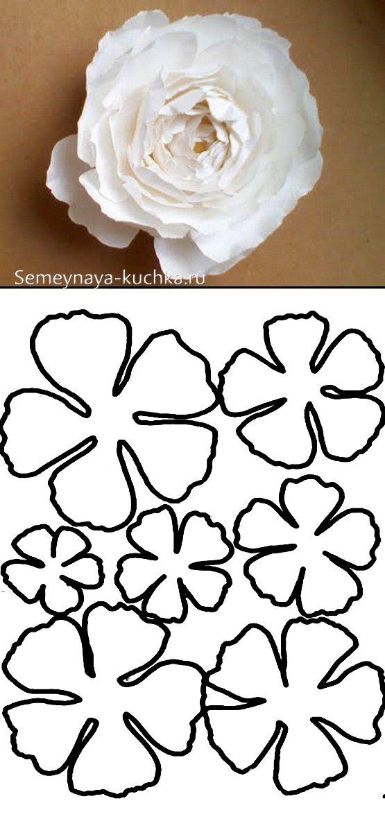 шаблон трафарет розы из бумаги