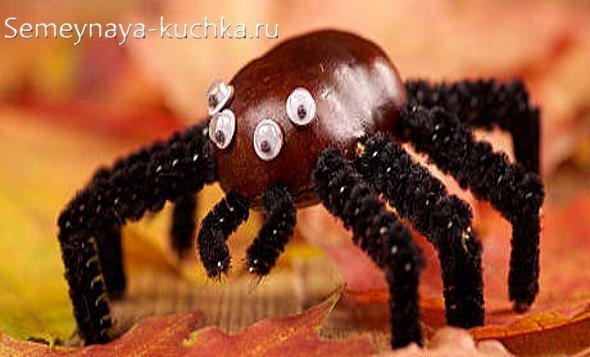 поделка для детей паук из каштана