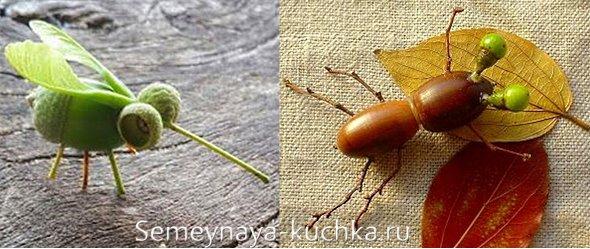 поделка жук из желудей