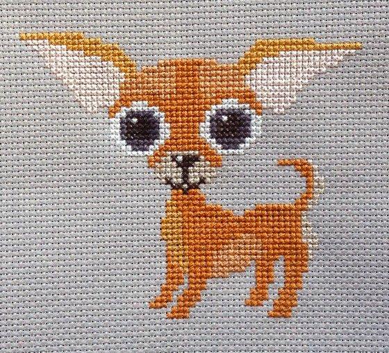 вышивка крестом собака чихуахуа