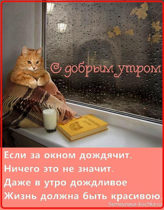 картинка доброе утро в дождь