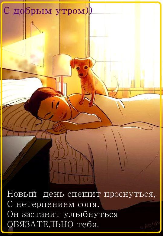 картинки доброе утро для девушки