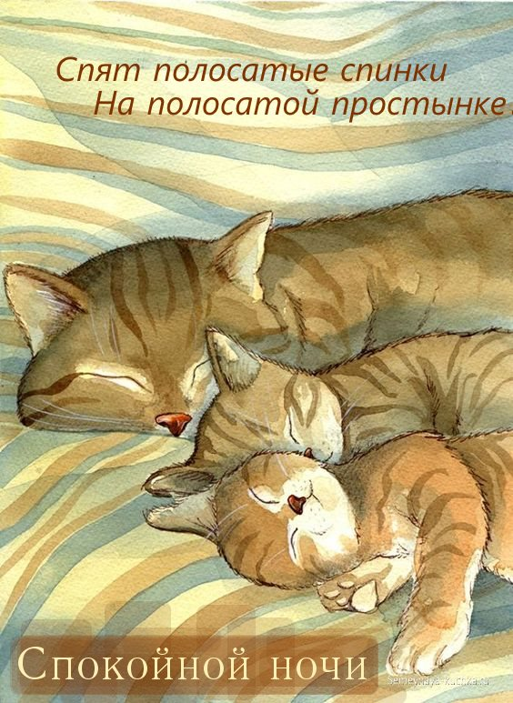 Картинки спокойной ночи с животными и надписями