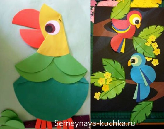 аппликации птицы попугай