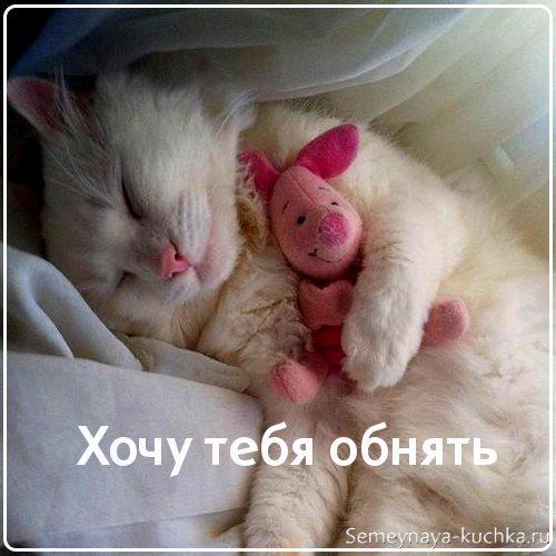 сладких снов любимая