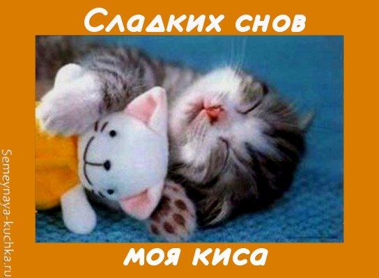 картинки засыпай любимая