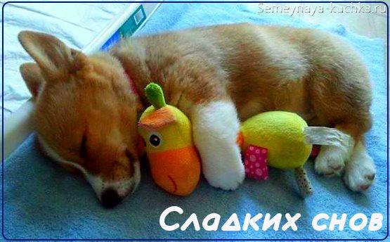 картинки сладких снов