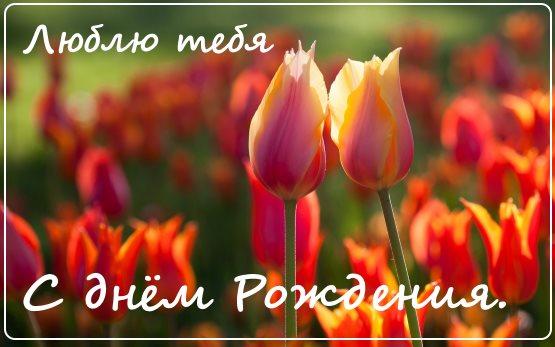 открытка с днем рождения цветы