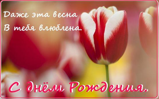 красивые цветы с днем рождения картинка