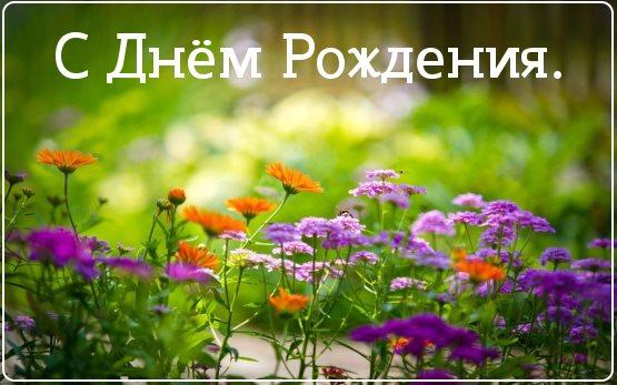 красивые цветы фото с днем рождения