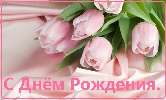 цветы тюльпаны с днем рождения