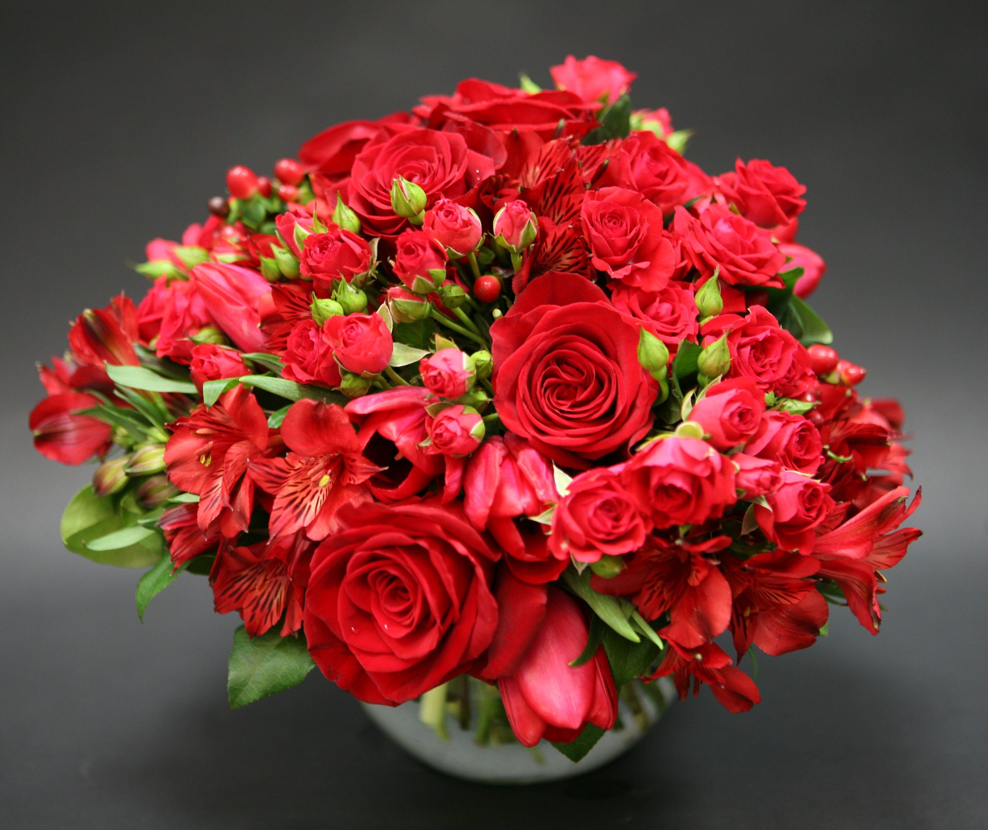 красивые цветы картинка