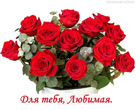 букет алых роз картинка красивая