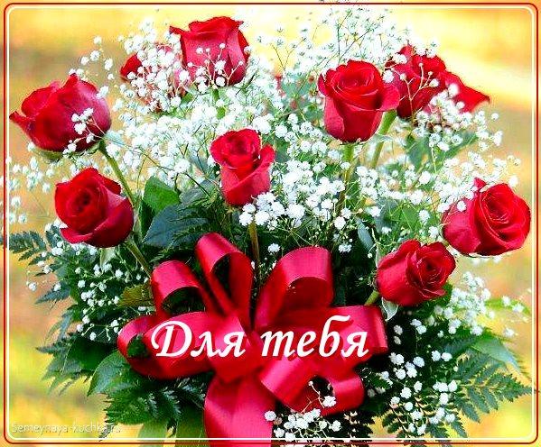 красивый букет роз фото