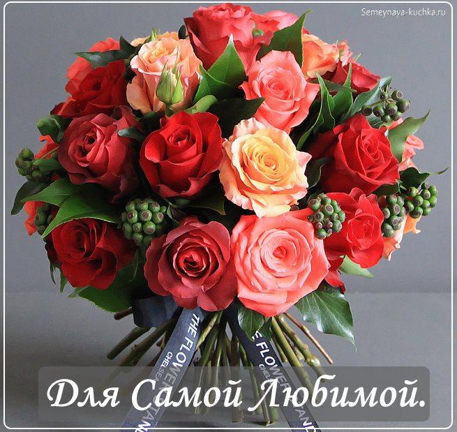 Розы цветы фото хорошего качества