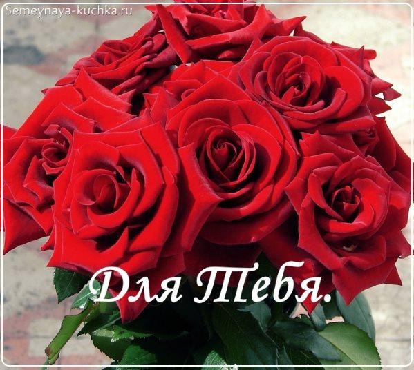 красные розы картинки