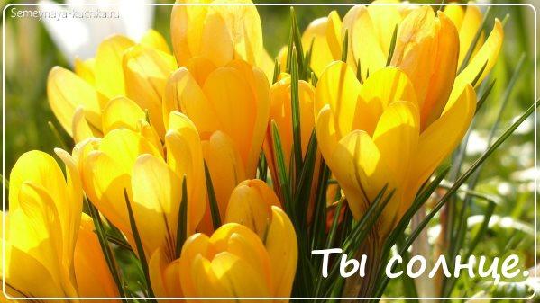 картинка весна цветы красивые