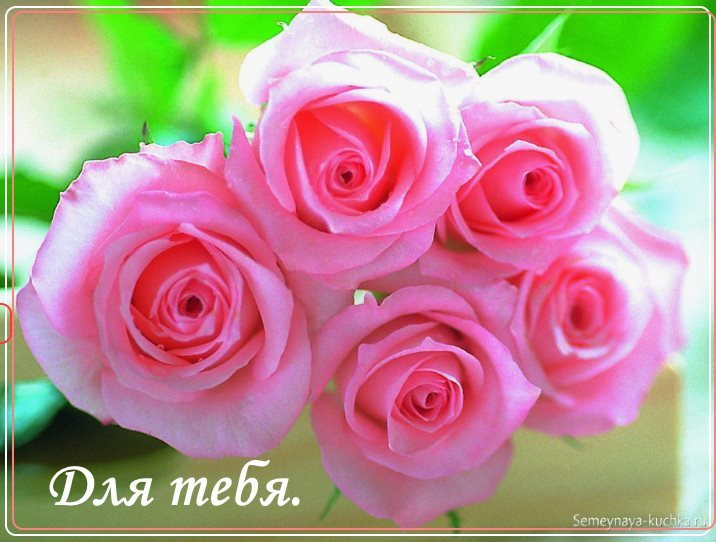 Букет из роз картинка