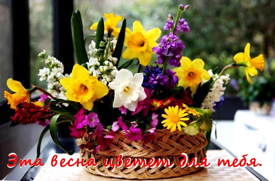 цветы в корзине для любимой картинка