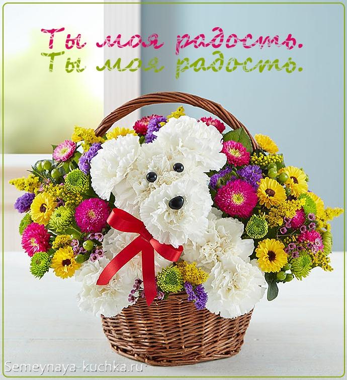 картинка цветы в корзине собачка
