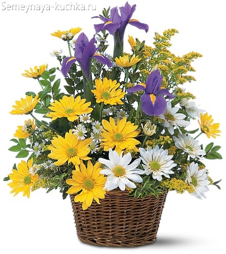 нежные цветы в корзине хризантемы