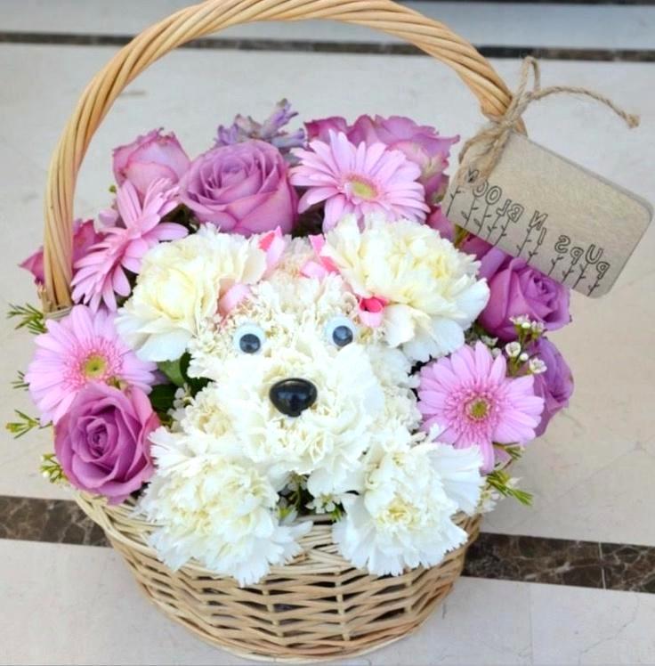 собачка из цветов в корзине фото
