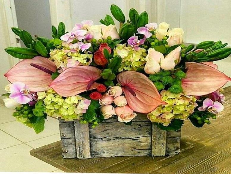 красивая корзина цветов