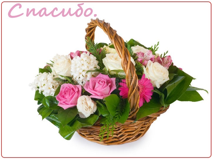 красивые цветы в корзине