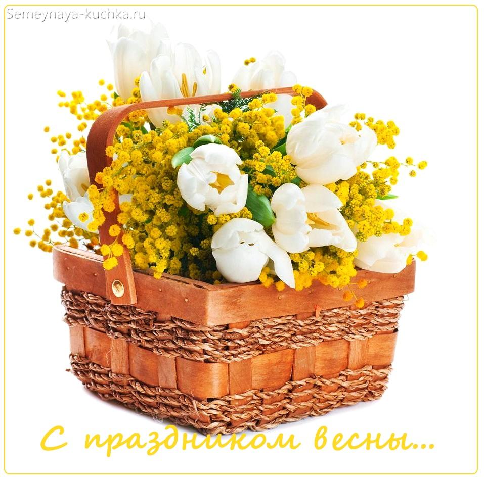 весенние цветы в корзине мимозы и крокусы