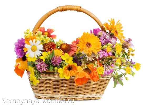 осенние цветы в корзине