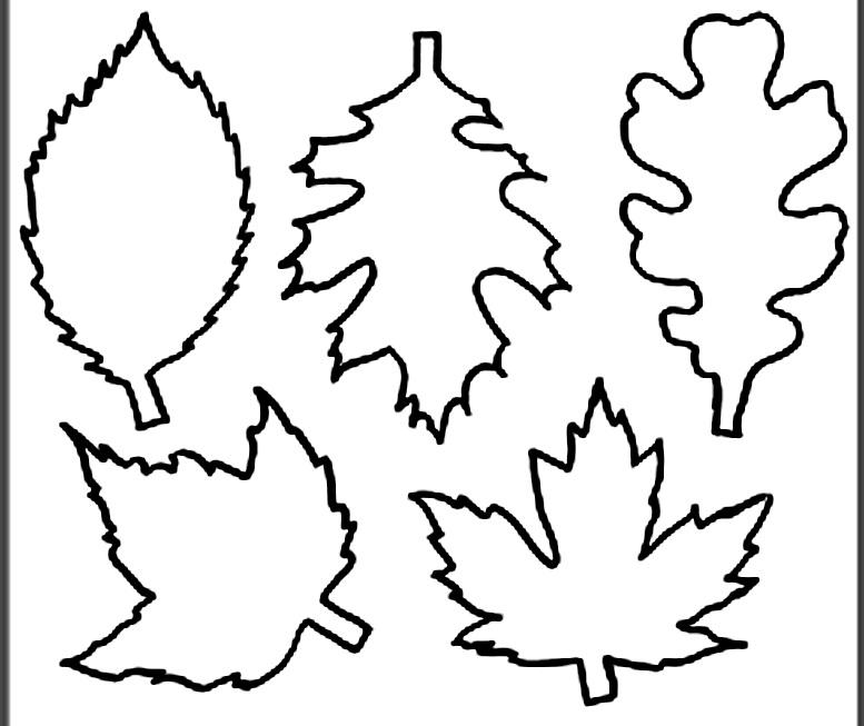 шаблоны листьев осенние