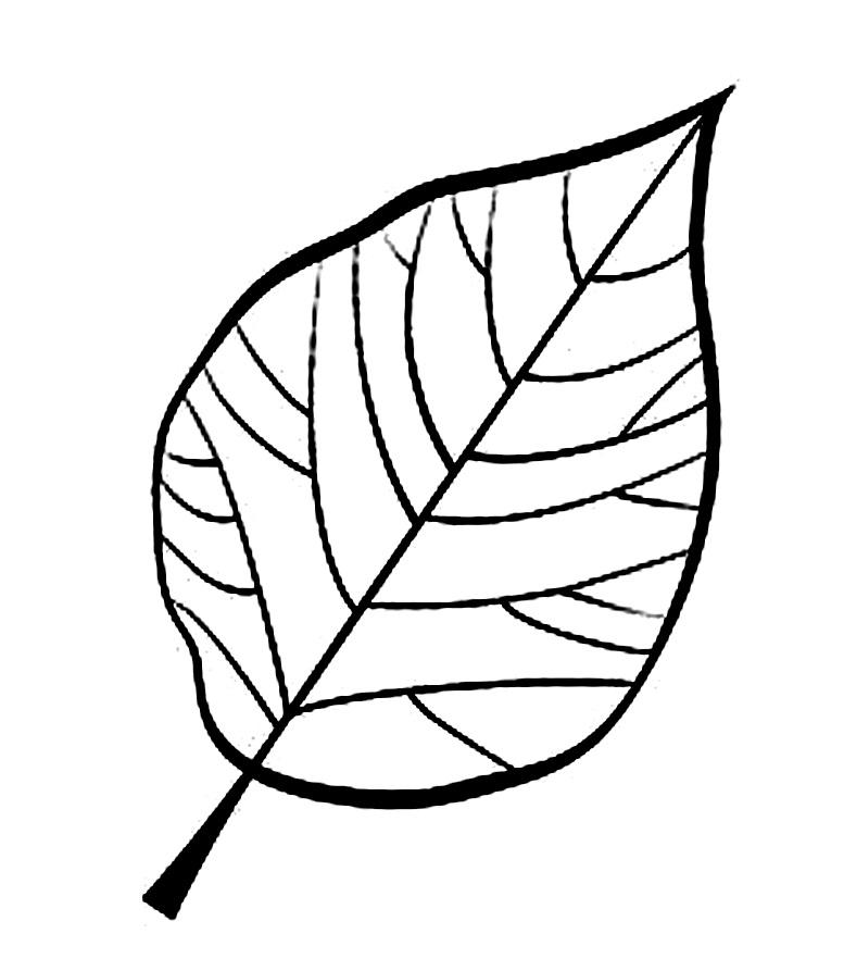 шаблоны листьев березы