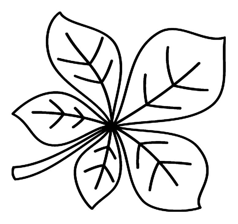 шаблоны листьев каштан