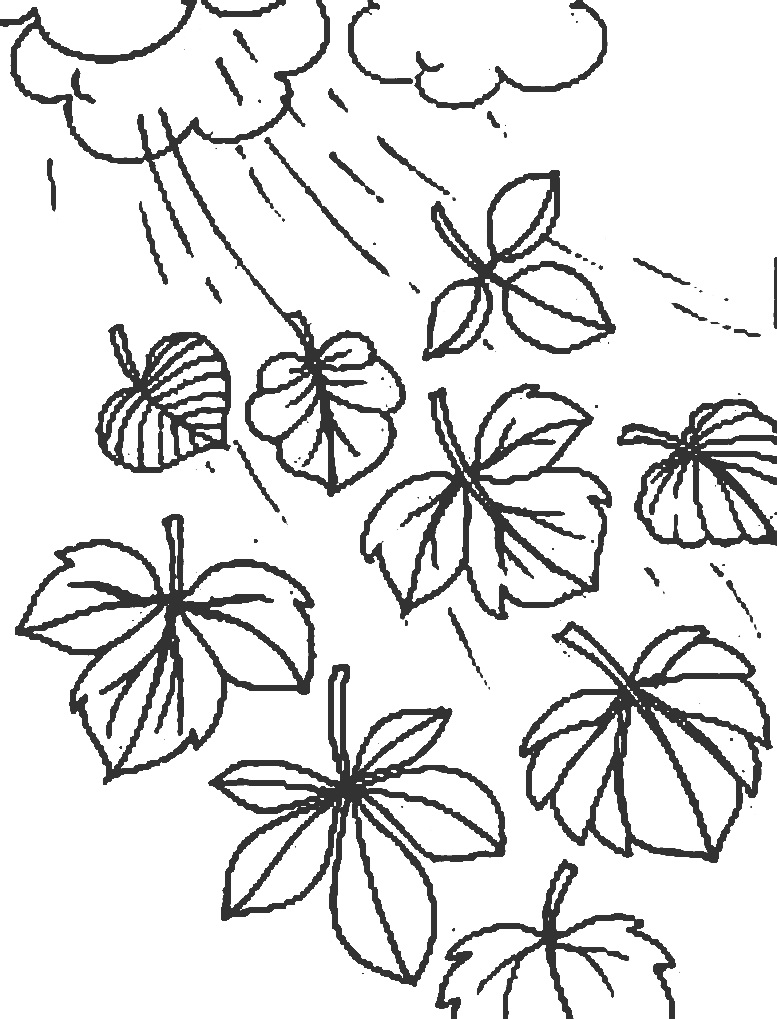 шаблоны листьев осенних листопад