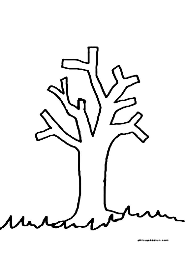 шаблон дерева без листьев для рисования и аппликаций