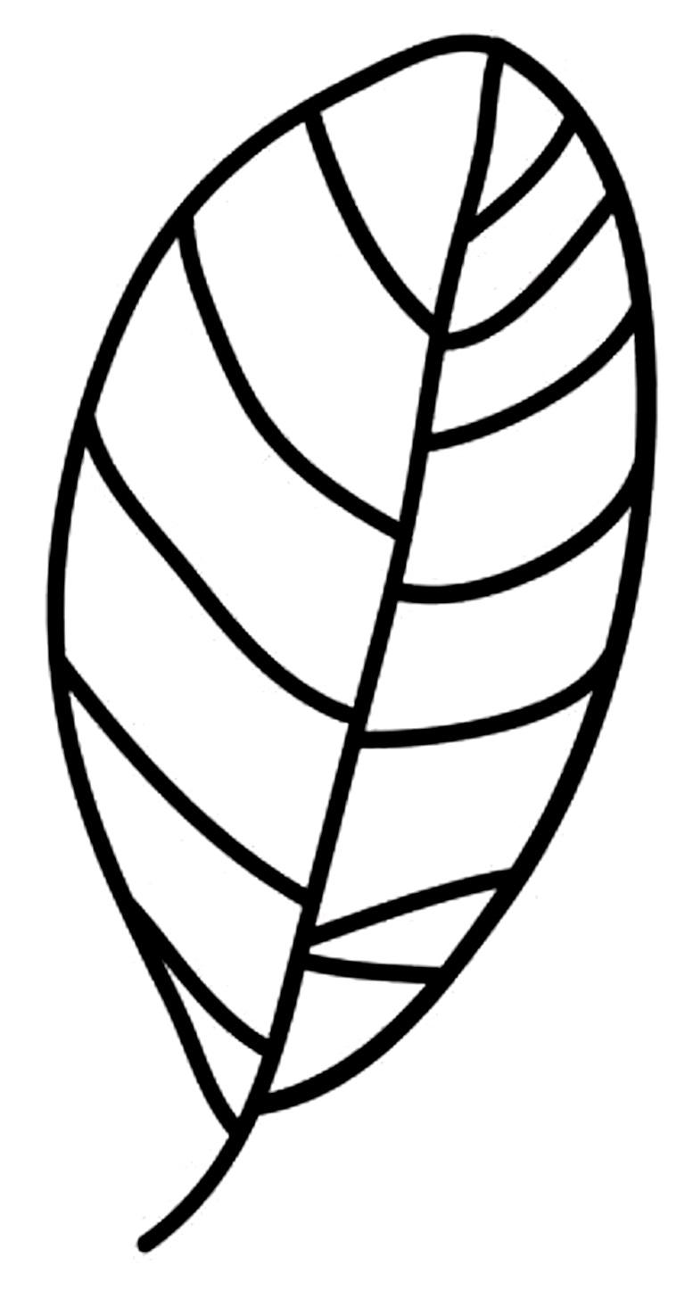 шаблоны листьев овальные