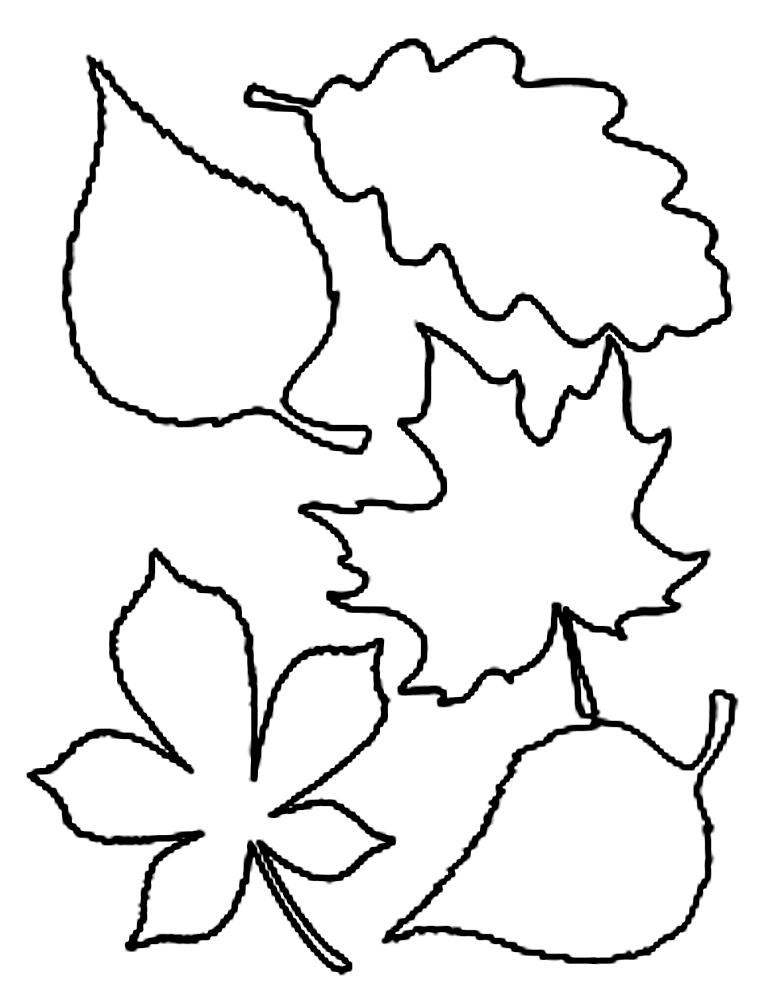 шаблоны листьев осенних